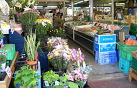 松戸市場店(食品館)